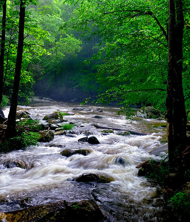 Tremont - Middle Prong of the Little River - Great Smoky Mountains National Park