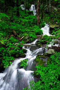 Tremont - Waterfall - Great Smoky Mountains National Park