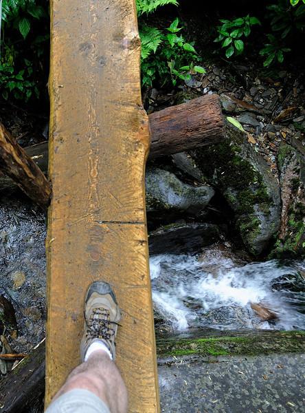 Alum Bluffs Hike - Smoky Mountains