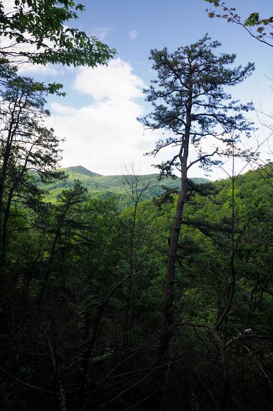 Laurel Falls Hike - Smoky Mountains