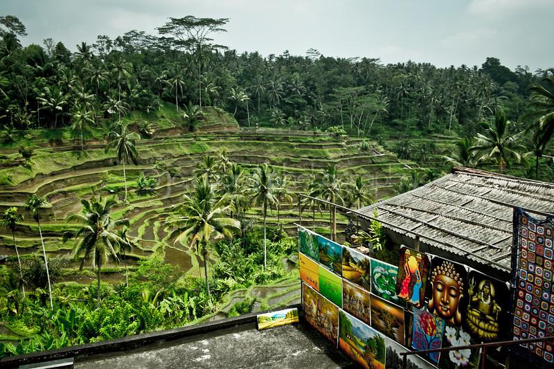 Bali Feb 2014 (45 of 319).jpg