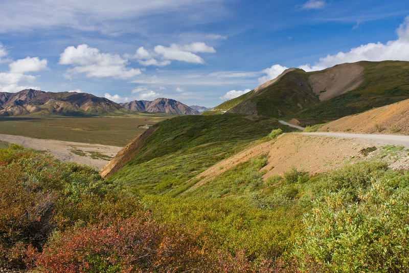 Denali National Park in Alaska, one of North America's largest wilderness preserves.