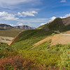 Denali National Park in Alaska, one of North America's largest wilderness preserves.