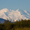 """Mt McKinley (called Denali by native americans and most Alaskans) in Denali National Park in Alaska is the tallest mountain in North America at 20,320 feet. It is relatively rare to see the top of the mountain, because like most tall mountains it """"makes its own weather"""" and even on a sunny day the peak is usually obscured by clouds."""