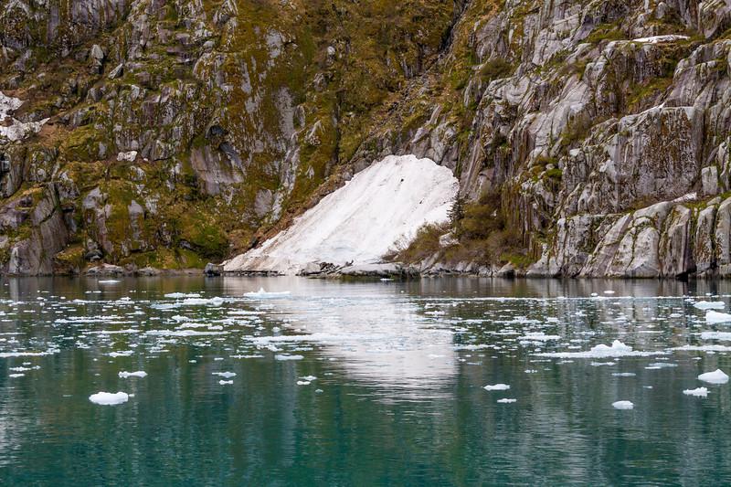 Cold, blue-green waters of Northwestern Fjord, near the Northwestern Glacier, in Kenai Fjords National Park in Alaska.