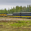 Alaska Railroad train ride - between Fairbanks, Alaska and Denali National Park, Alaska.