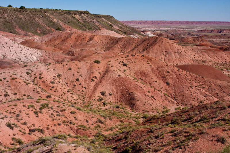 Painted Desert landscapes in the Petrified Forest National Park in Arizona. First established as a National Monument in 1906 by President Theodore Roosevelt,  the park was greatly expanded in size and scope, and was established as a National Park by Congress in 1962. It is a vast preserve, a designated wilderness area, and an incredible source of fossils. Petrified Wood and painted desert scenes are the most visible treasures of the park, but many desert and wilderness habitats are preserved here as well as 13,000 years of human history and culture in fossils and archeological sites.