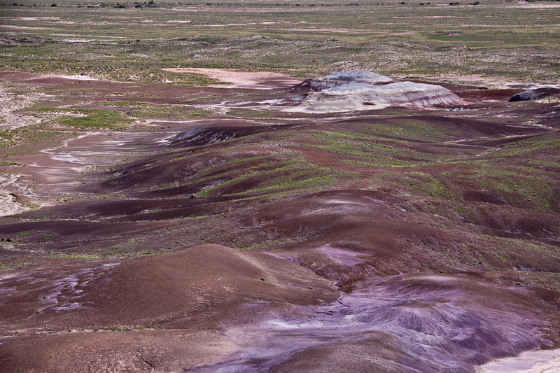 Blue Mesa area of the Painted Desert in the Petrified Forest National Park in Arizona. First established as a National Monument in 1906 by President Theodore Roosevelt,  the park was greatly expanded in size and scope, and was established as a National Park by Congress in 1962. It is a vast preserve, a designated wilderness area, and an incredible source of fossils. Petrified Wood and painted desert scenes are the most visible treasures of the park, but many desert and wilderness habitats are preserved here as well as 13,000 years of human history and culture in fossils and archeological sites.