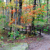 Forest path in Ozark Mountains in Arkansas in Autumn.