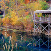 Autumn color in Arkansas. Lake in Eureka Springs Gardens.