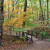Autumn color in Arkansas.