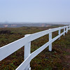 Misted by early morning fog, white fence leads to Gazebo on Point Arena Lighthouse Peninsula on the rocky Pacific coast of northern California.