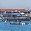 Avalon Harbor at Catalina Island, California.