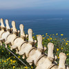 Whalebone statue and monument in Cabrillo National Monument park on Point Loma in San Diego. This is a tribute to the importance of the Gray Whales to this area of the California coast.
