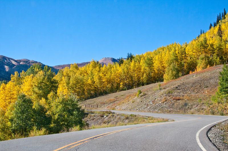 Autumn color with Aspen trees turning orange and yellow in Silverton, Colorado.