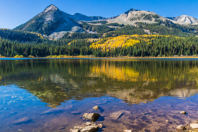 Autumn color at Lost Lake Campground off of Kebler Pass Road in Colorado.