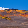 Autumn color along Colorado State Highway 135 between Gunnison and Crested Butte.