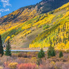 US 550, called the Million Dollar Highway, part of the San Juan Skyway Scenic Byway, amazingly resplendent in golden aspens and fall color, between Silverton and Ridgway Colorado.