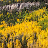 "Autumn color in Aspen trees along US 550 between Durango and Silverton, part of the scenic drive known as the ""Million Dollar Highway."""