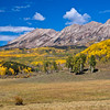 Farms and Ranches showing autumn color with Aspens turning - along the Ohio Pass road between Gunnison and Crested Butte, Colorado. The summit of Ohio Pass is 10076 feet and much of the road is unpaved and is closed in winter.