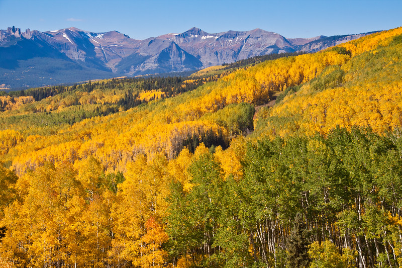 Autumn color with Aspens turning - in view of the Castles (mountains) along the Ohio Pass road between Gunnison and Crested Butte, Colorado. The summit of Ohio Pass is 10076 feet and much of the road is unpaved and is closed in winter.