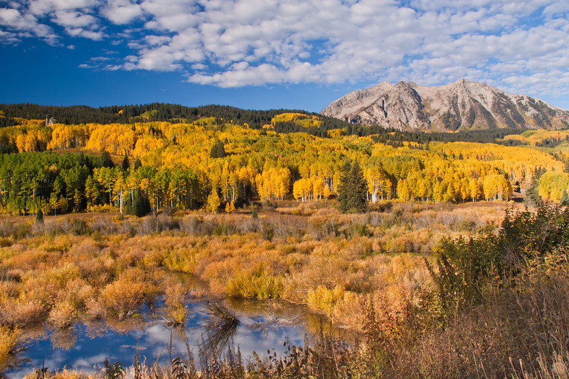 Autumn Color with Aspens turning - at East Beckwith Mountain along Kebler Pass road west of Crested Butte, Colorado.  This area contains one of the largest Aspen forests in the world. The summit of Kebler Pass is 10007 feet and most of the road is dirt and is closed in winter.