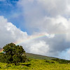 Rainbow on the back Road to Hana or Piilani Highway on the island of Maui in Hawaii.