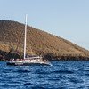 Whale watching tourist boat in Hawaii JN074764