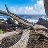 Beach and ocean waves at Keanae Peninsula, along the Road to Hana on Maui in Hawaii.
