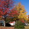 Autumn Color in Eastern Maine in October.