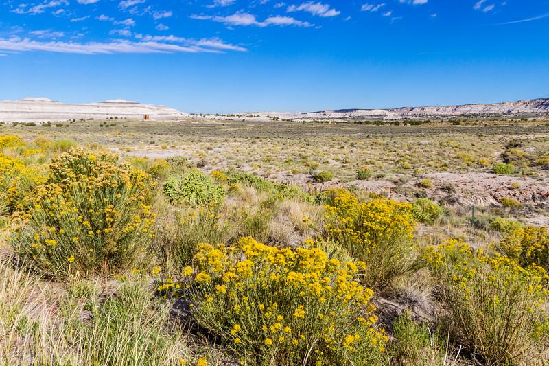 High desert landscape along US Highway 550 in northwestern New Mexico.