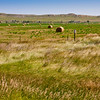 Hay Bales and grain farming in the plains and grasslands of South Dakota.