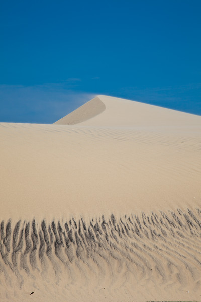 Sand blowing on Sand Dunes on South Padre Island in South Texas.