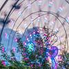 Ferris Wheel at the Houston Aquarium in downtown Houston