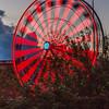Ferris Wheel at Houston Aquarium in downtown Houston,