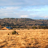 Panorama with ranch barn at Block Creek Natural Area, a coalition of area ranchers and land owners created to encourage conservation and ecological uses of the land.