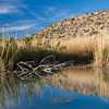 Reflections in pond in Wildlife Sanctuary near Rio Grande Village, at Big Bend National Park in Texas.
