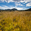 Grasslands and cloud formations in the Davis Mountains of Southwest Texas.