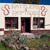 Buzz's Rattlers and Reptiles display near Alpine, Texas.