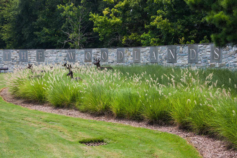 Design at the Woodlands Parkway Entrance to The Woodlands, Texas.