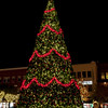 Christmas tree at night in The Woodlands, Texas.