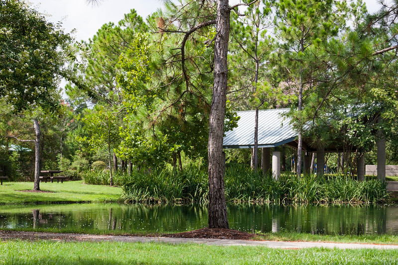 Park in The Woodlands, Texas.