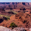 Dead Horse Point State Park in Utah overlooks the Colorado 2000 feet below with its carved canyon and amazing geologic formations and the pinnacles and buttes of Canyonlands National Park in the distance.