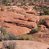 "Arches National Park contains the world's largest concentration of natural stone arches. This National Park is a red, arid desert, punctuated with oddly eroded sandstone forms such as fins, pinnacles, spires, balanced rocks, and arches. The 73,000-acre region has over 2,000 of these ""miracles of nature."""