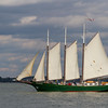 Tall ship schooner, Alliance, sailing at historic Yorktown in the Colonial National Historical Park in Virginia.