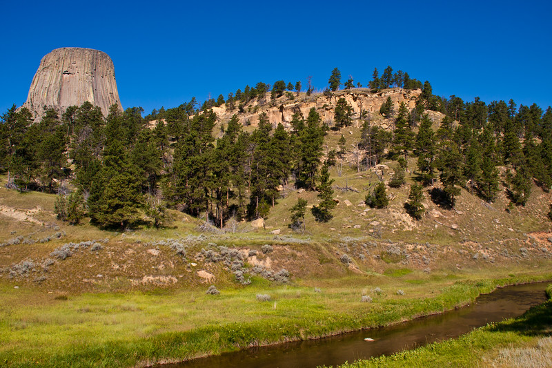 Devil's Tower National Monument in Wyoming surrounded by Black Hills of Wyoming forests.