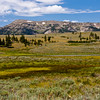 Indian Creek and sagebrush meadow, with Gallatin Mountain Range in the distance, in Yellowstone National Park in Wyoming.
