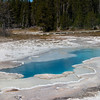Hot Springs and geysers in Upper Geyser Basin in Yellowstone National Park, Wyoming.