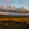 Sunrise with morning fog and mist on the Grand Tetons Mountain Range in the Grand Tetons National Park in Wyoming.  The Tetons are the youngest mountain range in the rockies, and one of the most dramatic because of the lack of foothills to obscure their height. They rise about 7000 feet above the surrounding area, seemingly straight up. Grand Teton mountain, the tallest in the range, is 13,700 feet in altitude.