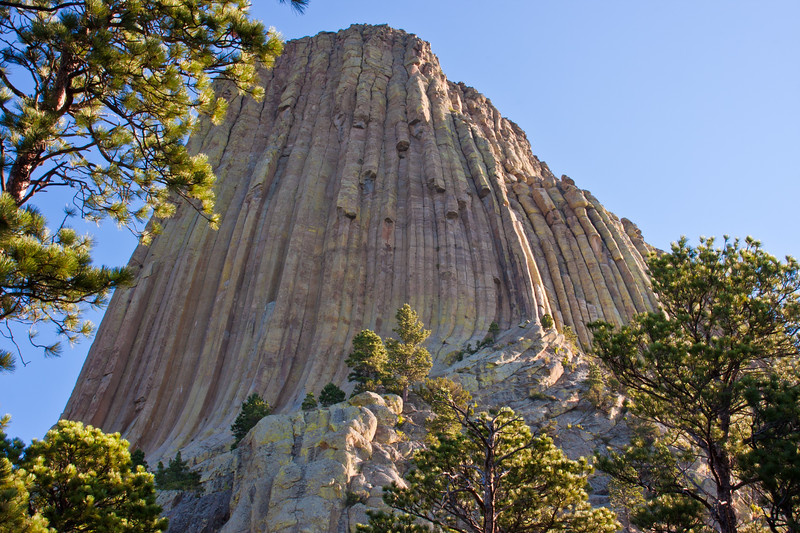 Devil's Tower National Monument in Wyoming, viewed from path around rock pile at bottom of tower, in early morning light just after sunrise.